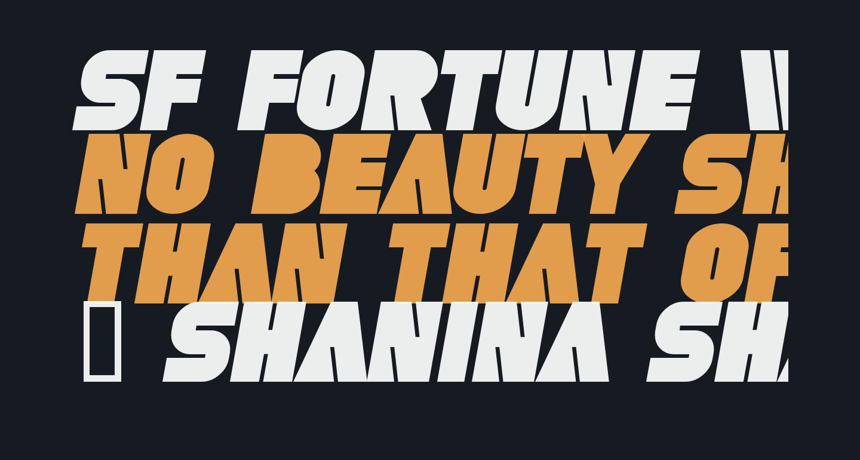 SF Fortune Wheel Bold Italic