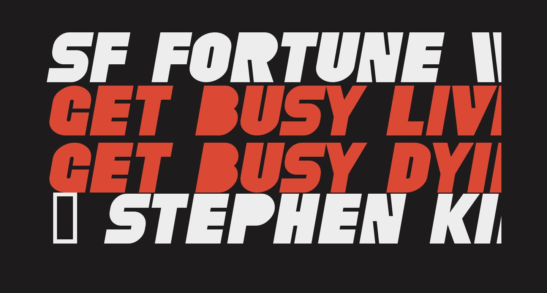SF Fortune Wheel Italic