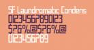 SF Laundromatic Condensed