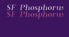 SF Phosphorus