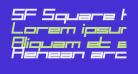 SF Square Head Bold Italic