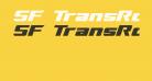 SF TransRobotics Extended Italic
