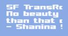 SF TransRobotics Extended