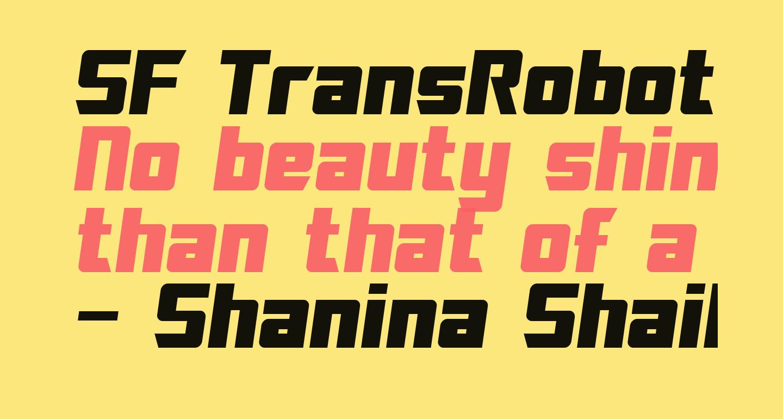 SF TransRobotics Oblique