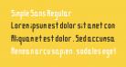 Simple Sans Regular