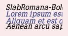 SlabRomana-BoldOblique