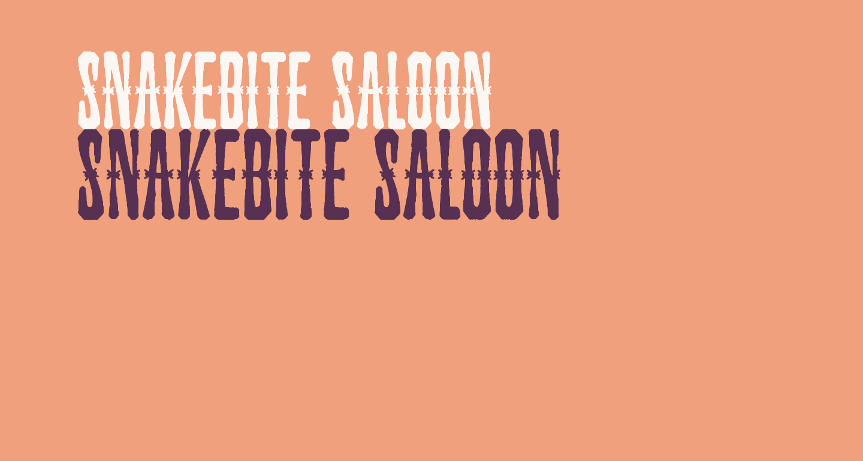 Snakebite Saloon