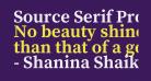 Source Serif Pro Bold