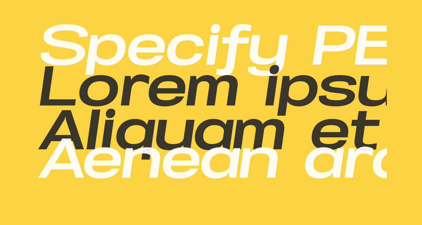 Specify PERSONAL Expanded Bold Italic