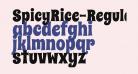 SpicyRice-Regular