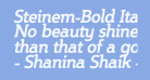 Steinem-Bold Italic