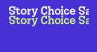 Story Choice Sans Serif