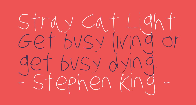 Stray Cat Light