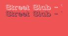 Street Slab - Wide 3D Rev