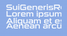 SuiGenerisRg-Regular