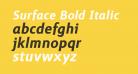 Surface Bold Italic