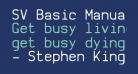SV Basic Manual