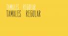 Tamales Regular