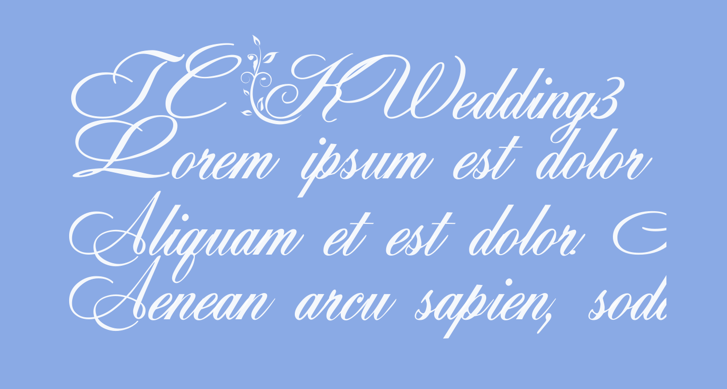 TC _Wedding3