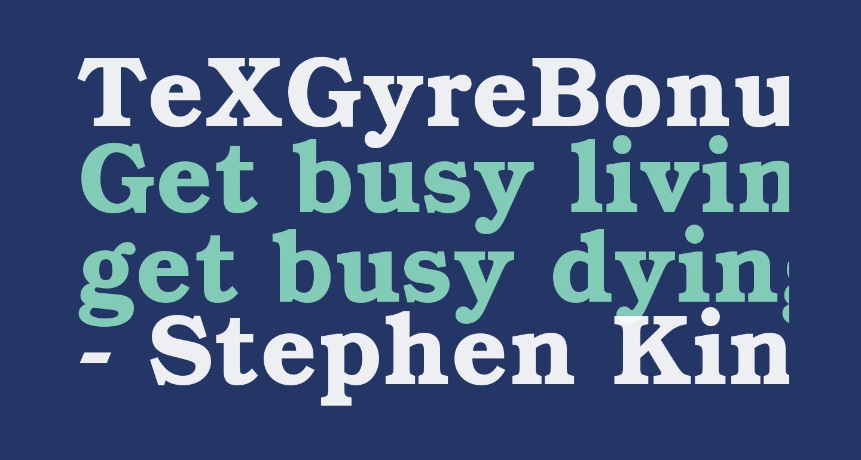 TeXGyreBonum-Bold