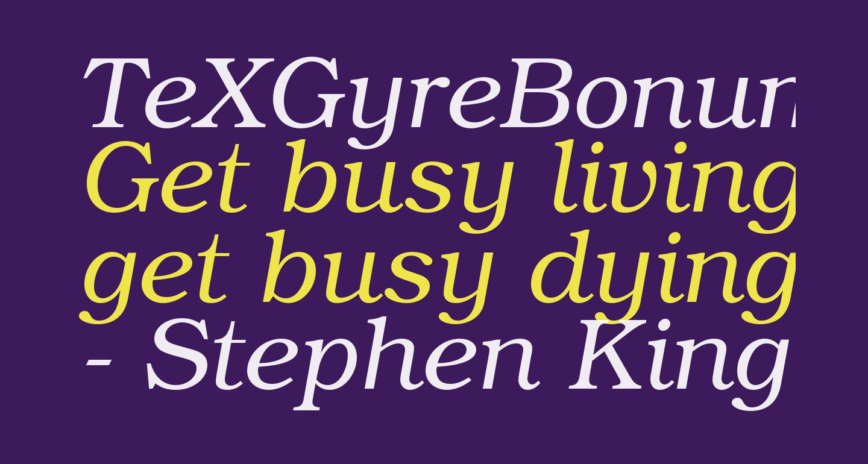 TeXGyreBonum-Italic