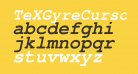 TeXGyreCursor-BoldItalic