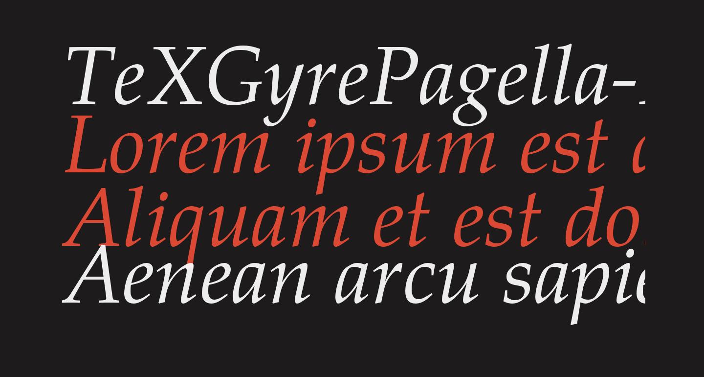 TeXGyrePagella-Italic