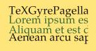 TeXGyrePagella-Regular