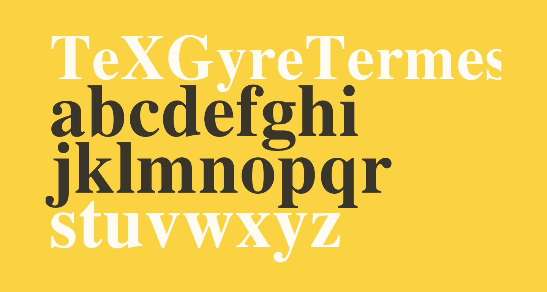 TeXGyreTermes-Bold