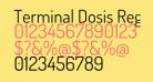 Terminal Dosis Regular