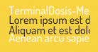 TerminalDosis-Medium
