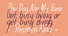 The Dog Ate My Homework Italic
