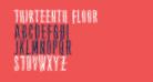 Thirteenth Floor