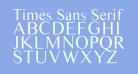 Times Sans Serif