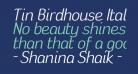 Tin Birdhouse Italic