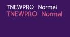 TNEWPRO Normal