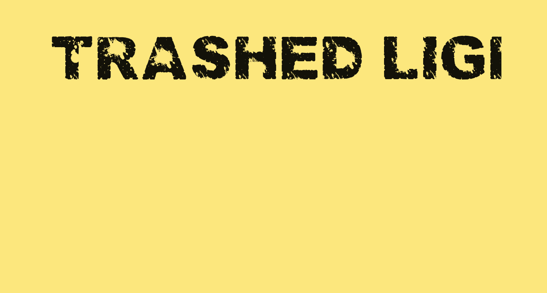Trashed light Regular