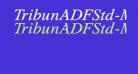 TribunADFStd-MediumItalic