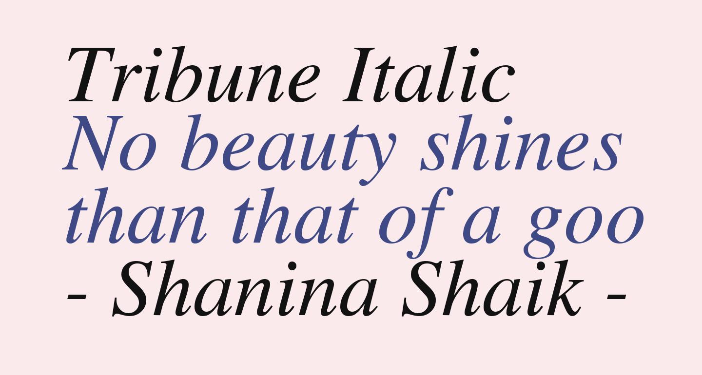 Tribune Italic