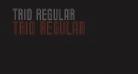Trio Regular