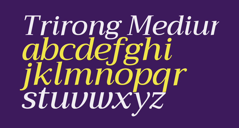 Trirong Medium Italic