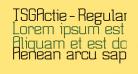 TSGActie-Regular
