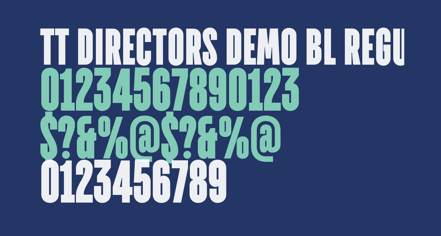 TT Directors DEMO BL Regular
