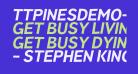 TTPinesDEMO-BoldItalic
