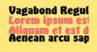 Vagabond Regular