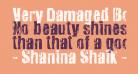 Very Damaged Bold
