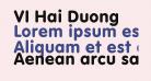 VI Hai Duong