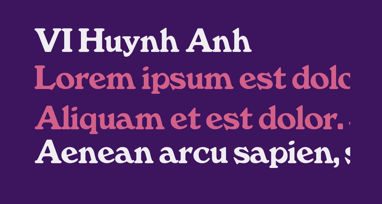 VI Huynh Anh