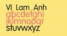 VI Lam Anh