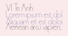 VI Tri Anh